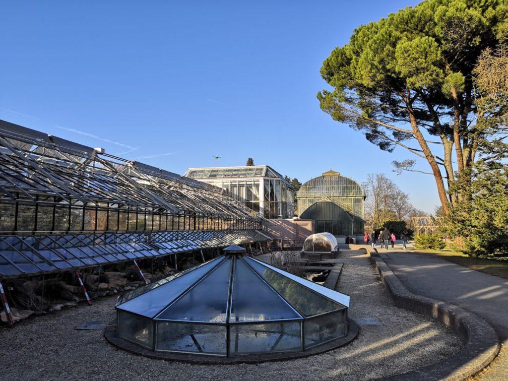 serres du jardin botanique
