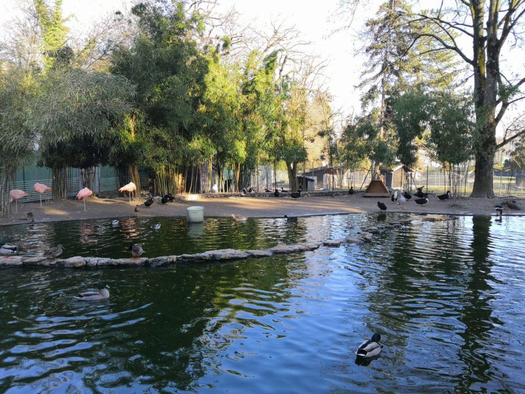 parc aux animaux du jardin botanique