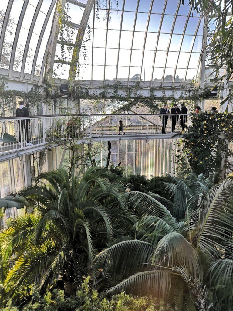 vue du haut de la serre jardin botanique