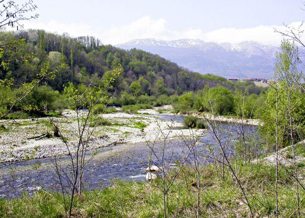 les rives de l'Allondon