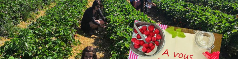 cueillette de fraises et cuisine