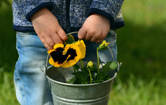 enfant jardinant