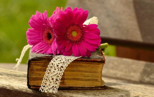 publications offertes