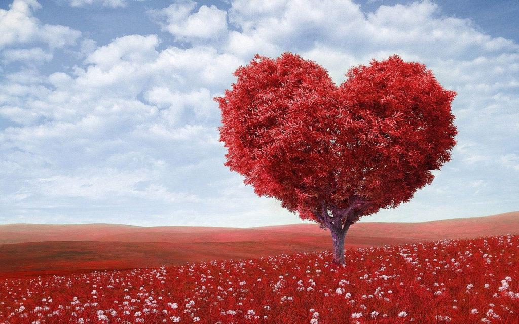 coeur en forme d'arbre