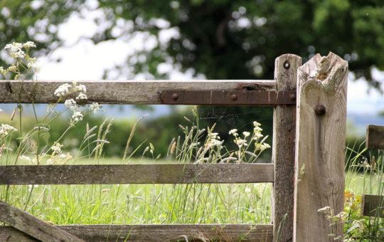 barrière sentier fermé