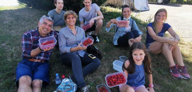 groupe à la fraisière