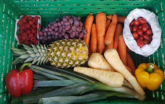 paniers légumes aux petits oignons genève