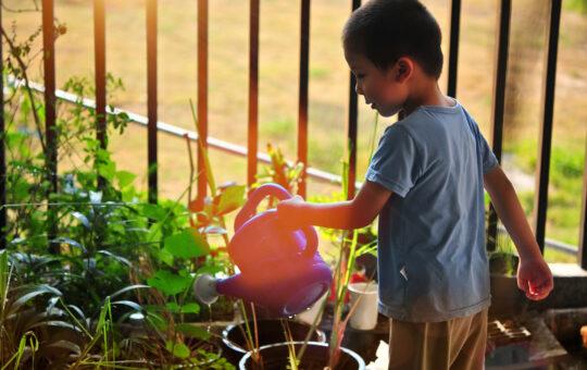 enfant arrose jardin